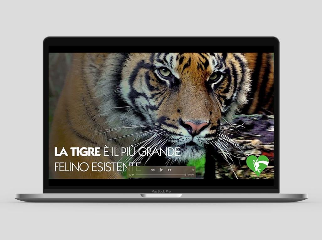 Bioparco di Roma - MOO Comunicazione - Video e Foto
